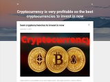 Cryptocurrency is very profitable so the best cryptocurrencies to invest in now