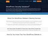 Got Hacked? | WordPress Malware Services | cWebConsultants