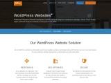WordPress Website Design & Development Services | cWebConsultants