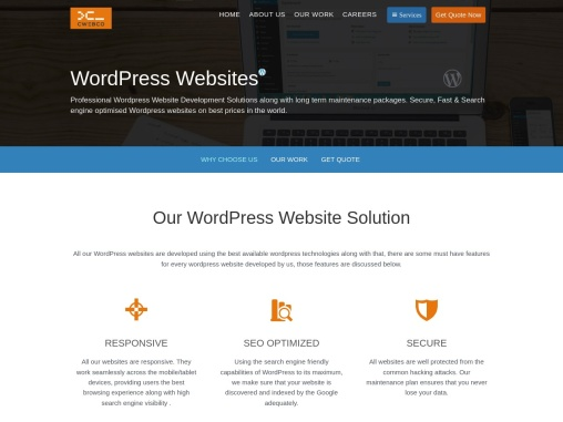 Highly Appealing | WordPress Website Design Service | cWebConsultants