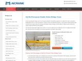 Features of NLH European Hoist Double Girder Bridge Crane