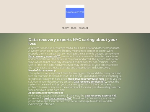Data recovery experts NYC caring about your loss