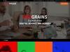 Best Digital Marketing Services Agency In India – Digigrains