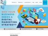 Why Your Business Needs a Digital Marketing Strategy?