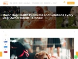 Major Dog Health Problems and Solutions Every Dog Owner Needs To Know
