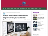 Why is an eCommerce Website important for your Business!
