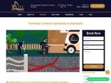 Termite Fumigation In Karachi – Best Termite Control Services In Karachi