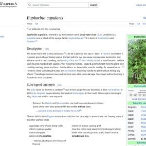 Euphorbia cupularis - Wikipedia