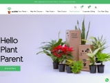 eplants.in | The Joy Of Buying And Caring For Plants