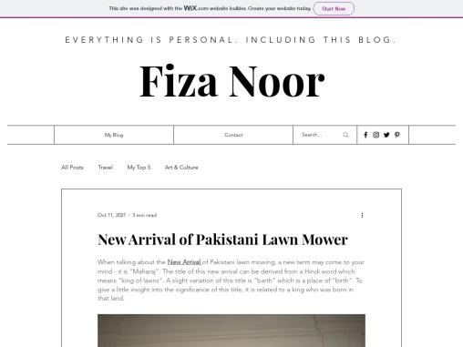 New Arrival of Pakistani Lawn Mower