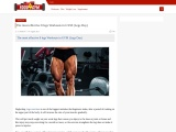 8 Effective legs Workouts in GYM (Legs Day)