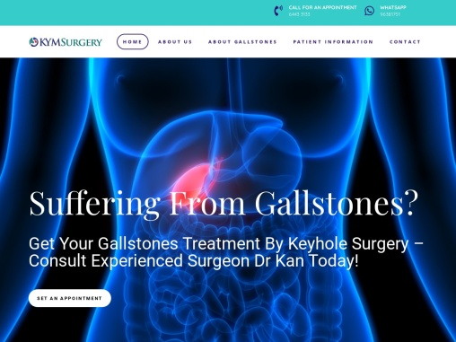 Gallbladder Surgery Singapore Gallbladder Surgery Singapore