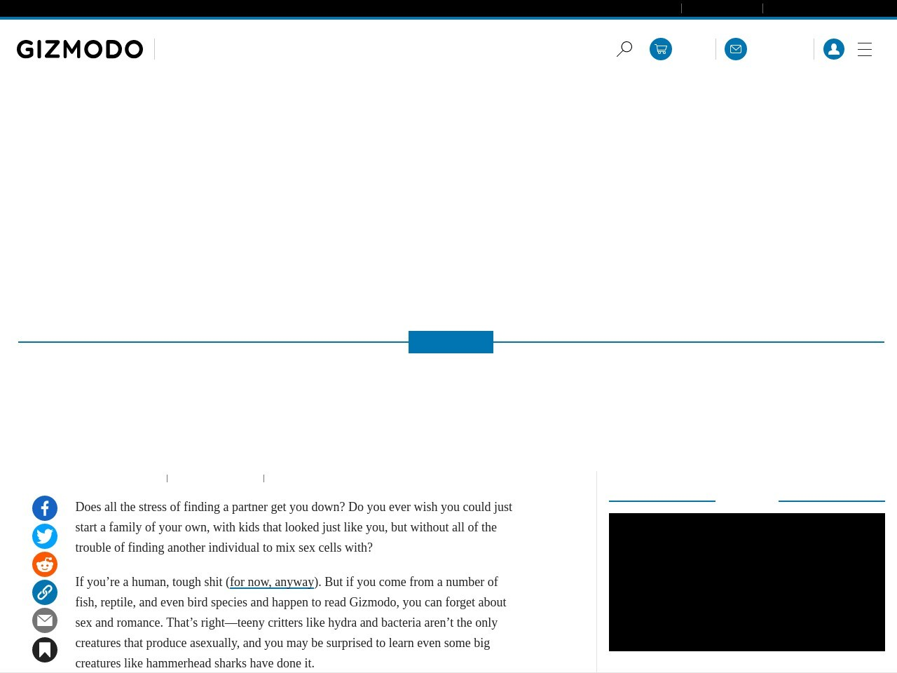 These Asexual Animals Don't Need Love on Valentine's Day (or Any Day)