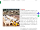 We are Called as the Best Goat Farming Training Centre