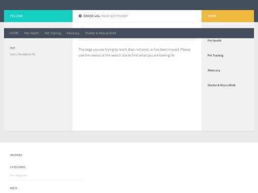 Easy Homemade Healthy Dog Food With Healing Spices