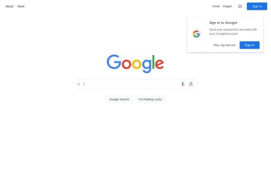 Snapshot of Google