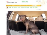 How To Secure Your Car Seat From Your Pet Dog?