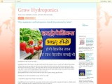 हाइड्रोपोनिक् Hydroponics Vegetable Farming