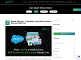 What Is Salesforce CPQ And Why Every B2B Ecommerce Business Needs One