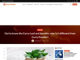 Get To Know The Curry Leaf And Benefits: Why Is It Different From Curry Powder?