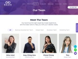 Highly Experience Website Development Team at Hachi Web Solutions