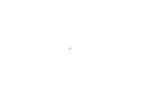 How To Setup Brother Wireless Printer :Detailed Steps
