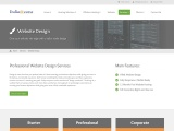 India access web hosting and development