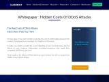 Whitepaper- Hidden Cost of DDoS Attacks | MazeBolt
