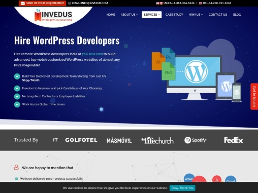 Hire WordPress Developers India | Hire WordPress Programmers