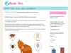 A Brief Guide On How To Get Rid Of Fleas On Cats
