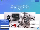 What Is Customer Lifetime Value? Everything You Need to Know