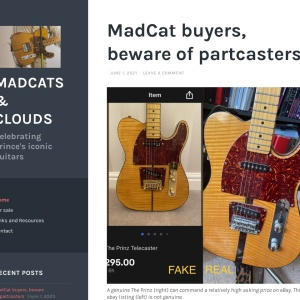 Madcats & Clouds   Celebrating Prince's iconic guitars