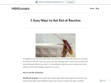 5 Easy Ways to Get Rid of Roaches
