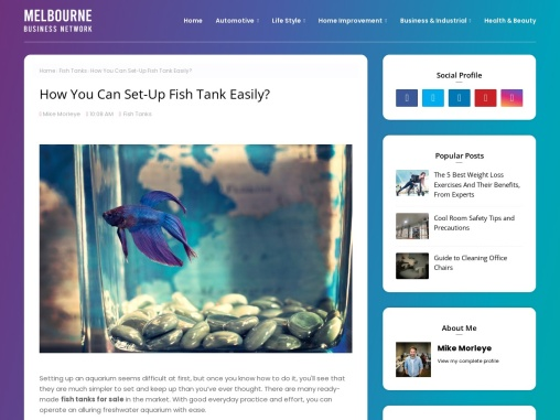 How You Can Set-Up Fish Tank Easily?