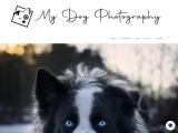 Professional Photographer in Belgaum