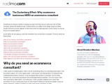 eCommerce Consultant   eCommerce Business Consultant