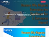 Top Reasons Why Magento Extensions Are Significant For E-Commerce Stores?