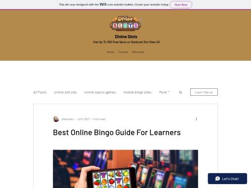 Best Online Bingo Guide For Learners