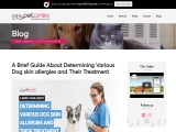 How to cure skin allergy in dogs – Petamiko