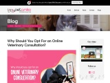 Why Should You Opt For an Online Veterinary Consultation?