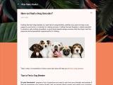 How to Find Best Dog Breeder? PetMateFinder