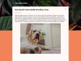 Tips for Successfully Breeding a Dog