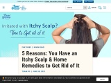 What are the reasons for Itchy Scalp?