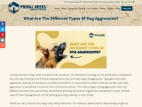 What Are The Different Types Of Dog Aggression?