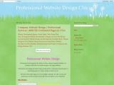 professional website design chicago