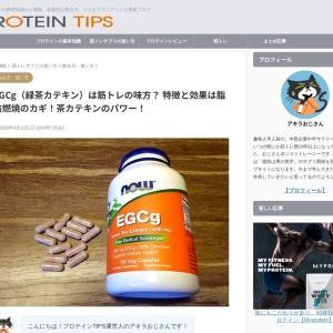 緑茶カテキン(EGCg)とは? 特徴と効果について - 筋トレマニアのプロテインTIPS