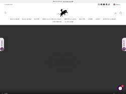 Raas The Global Desi screenshot
