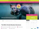 1-Day Orlando Manatee Snorkel Tours | Real Florida Adventures