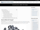 Everything about EEMUA 145 Flanges