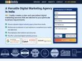 Indian digital marketing company – Seodaddy